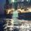 Seaspiracy: Denizler Komplosu Belgeseli Üzerine